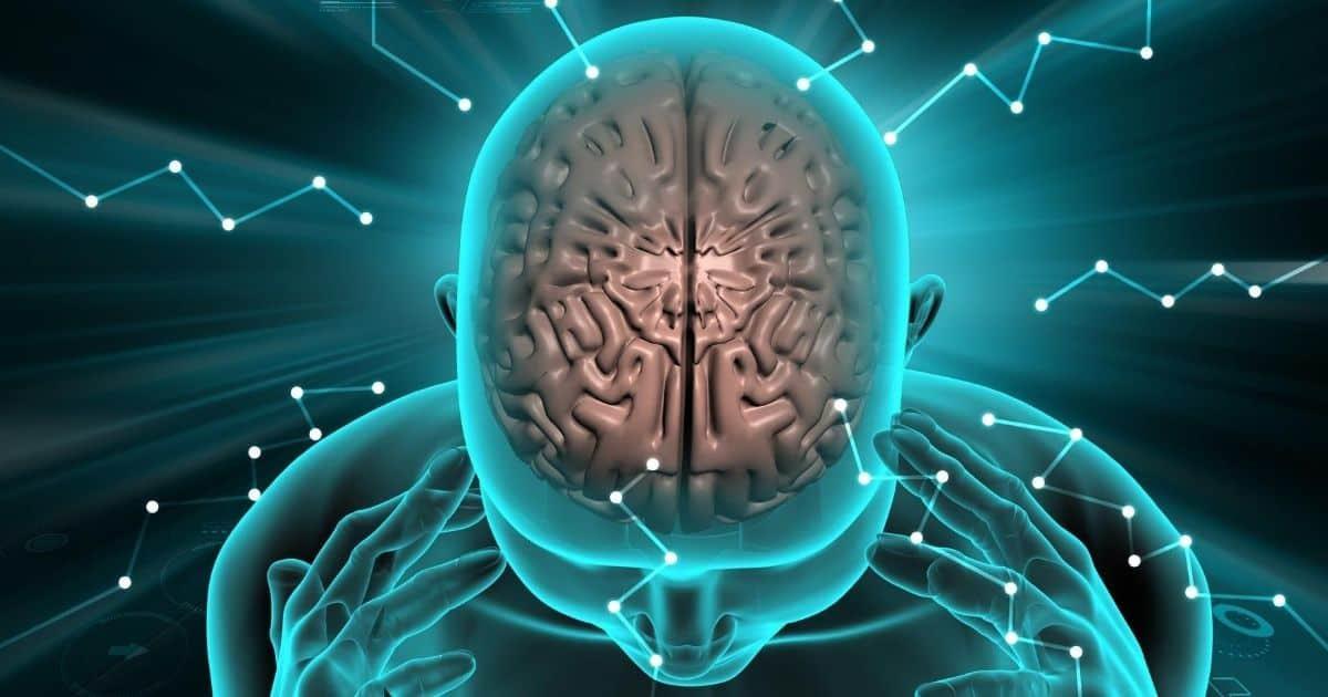 Hjärnans dag Hjärnfonden